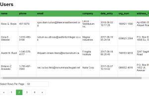 Portfolio for Angular 2+ Front End Service