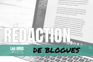 Portfolio for Native French Canadian Blogger