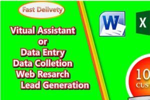 Portfolio for Data Entry   Lead Generation