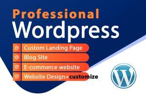 Portfolio for Professional Wordpress website
