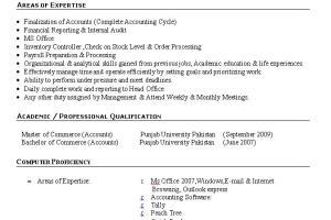 Portfolio for Accountant & Data Analyst
