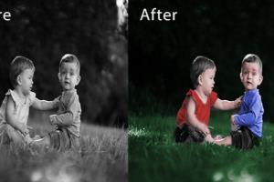 Portfolio for Coloize the Black & White Photo