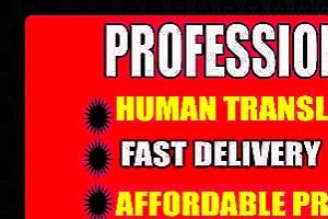 Portfolio for I will help you translate any language