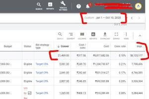 Portfolio for Google Ads Manager 10+Exp