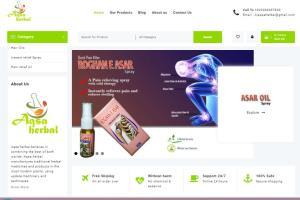 Portfolio for WordPress web designing & Graphics