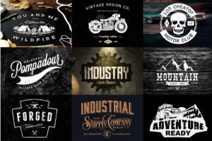 Portfolio for i will design vintage retro logo
