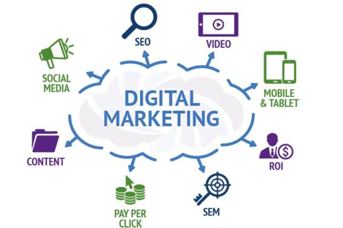 Portfolio for Digital marketing, SEO, SMO, SME, SMM