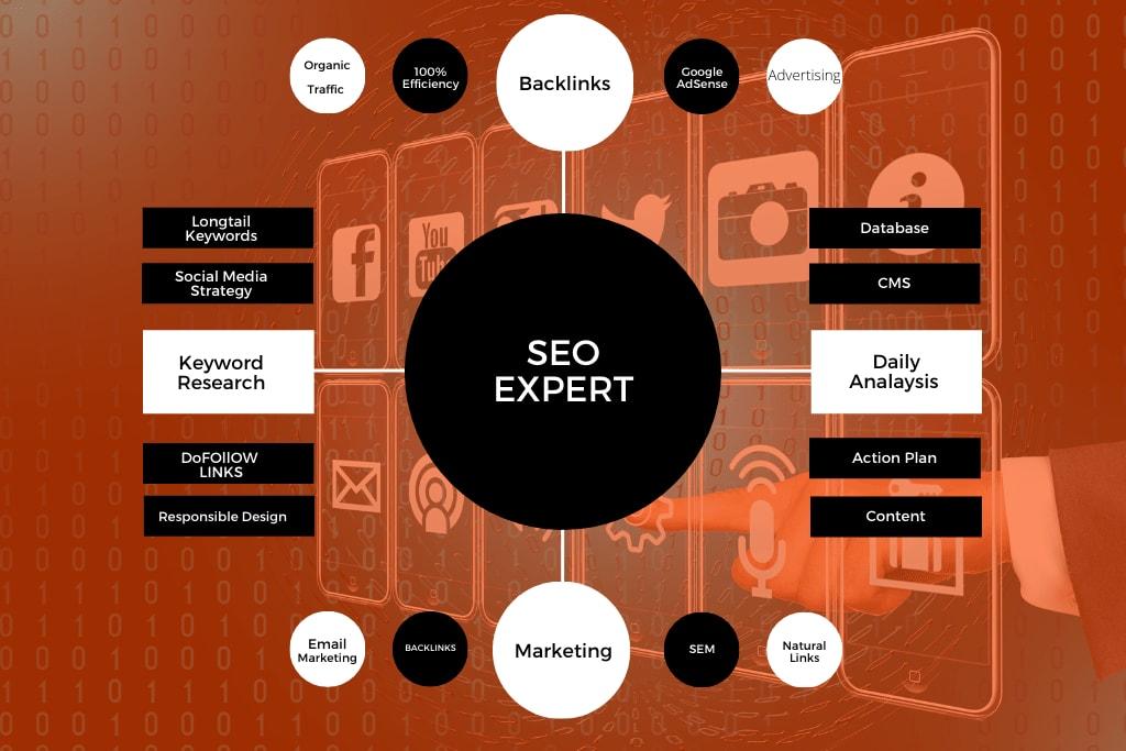 Portfolio for Digital and Social Media Marketing