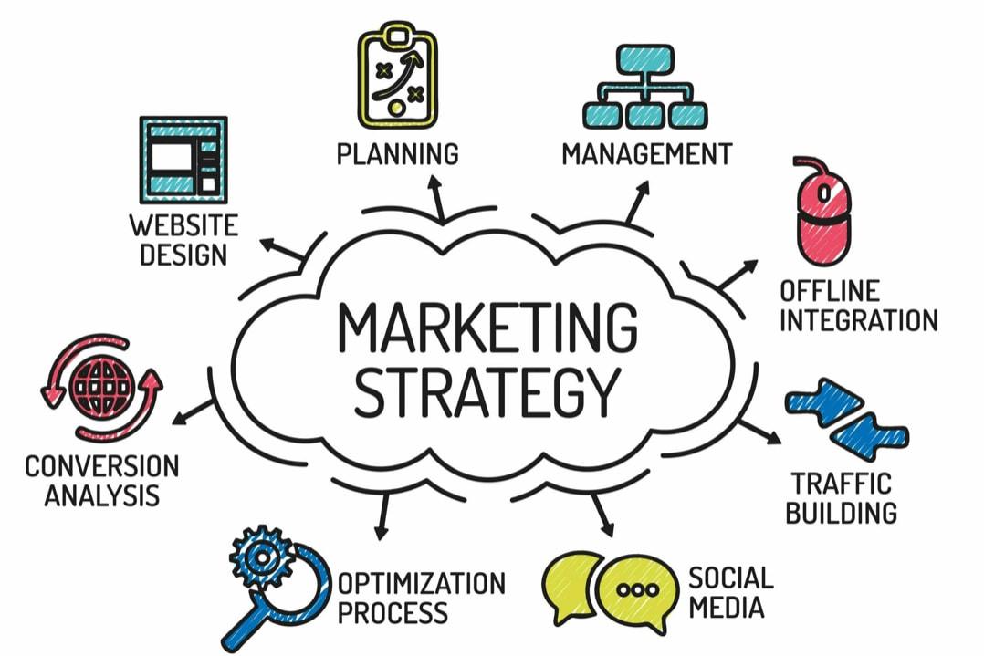 Portfolio for Marketing Strategy Development