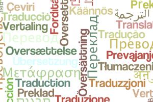 Portfolio for Language translation