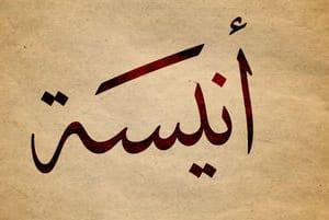 Portfolio for Translation from Arabic, English, Urdu.