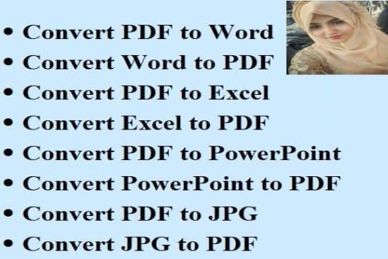 Portfolio for convert pdf to word, pdf to excel