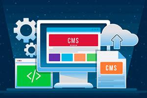 Portfolio for Content Management Services