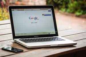 Portfolio for Google Ads Specialist