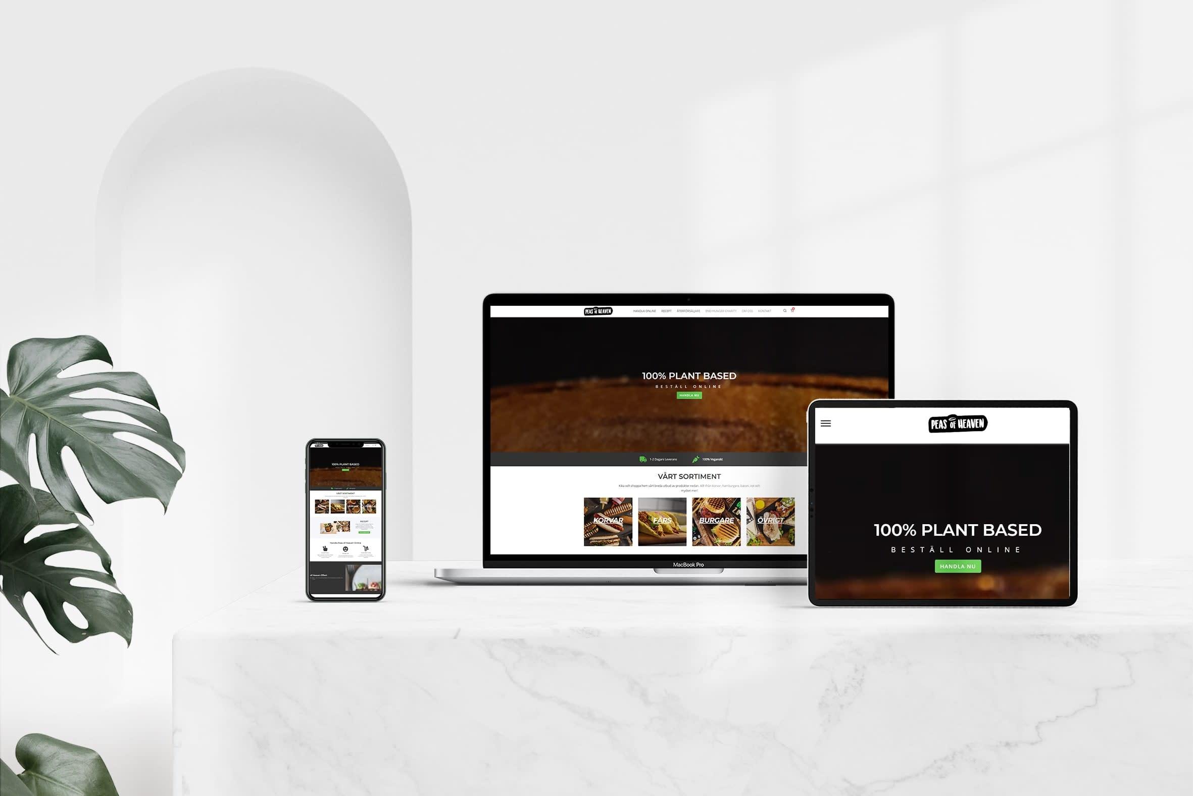 Portfolio for Website Front-End Designing