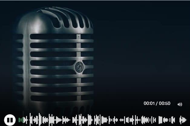 Portfolio for Professional voiceover Services
