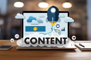 Portfolio for SEO Content Writing| Web Content Writing