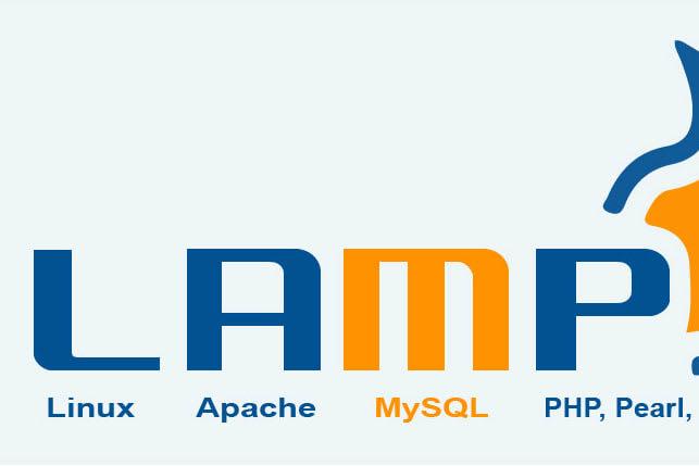 Portfolio for PHP, Python,JavaScript Services