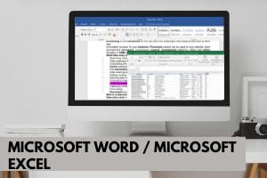 Portfolio for Microsoft Office: Word | Excel