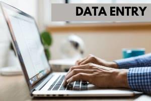 Portfolio for Data Entry | Data Processing