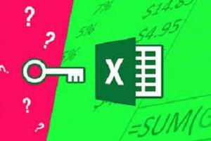 Portfolio for Microsoft Excel Advanced Functions