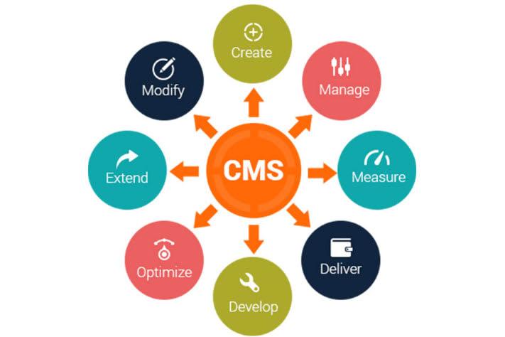 Portfolio for CMS Development
