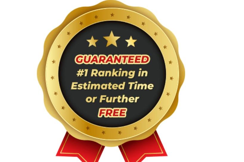 Portfolio for SEO We Grow Top Ranking