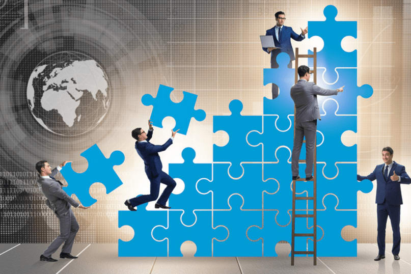 Portfolio for Management Consultant