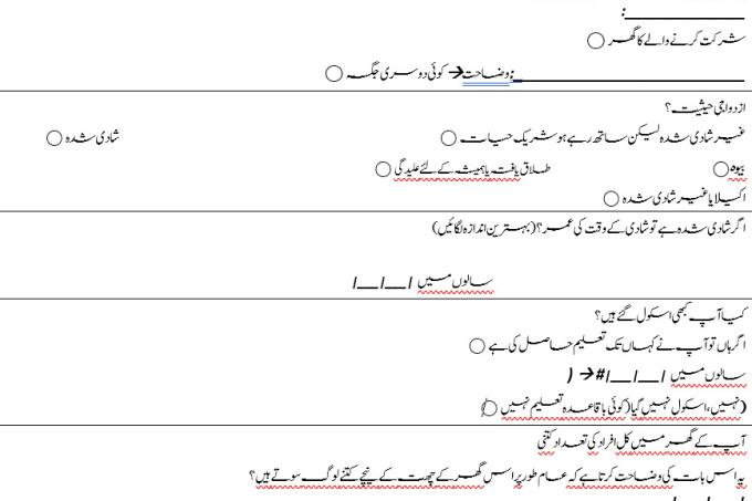 Portfolio for English to Urdu translation and typing