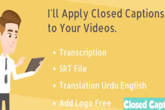 Portfolio for Subtitles in Hindi  And English