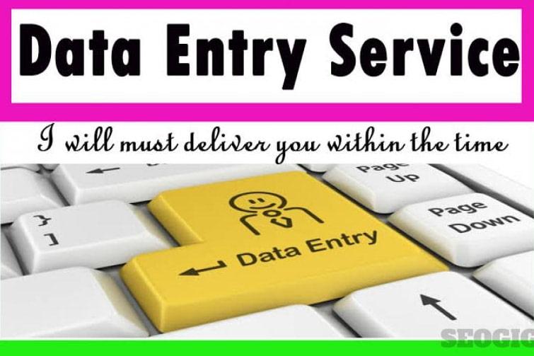 Portfolio for Data Entry, copy paste ,Translation