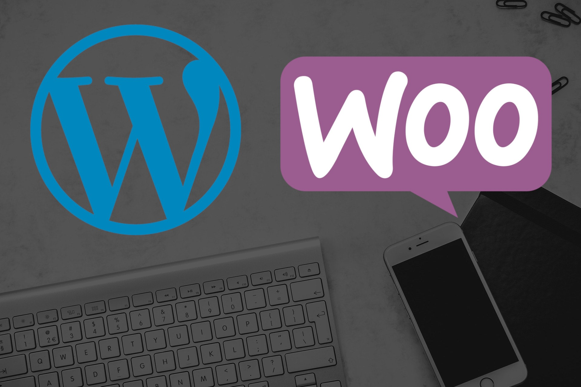 Portfolio for WooCommerce Training and Support