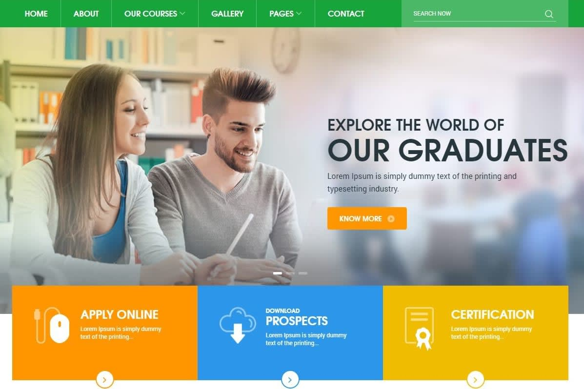 Portfolio for Online course Wordpress website