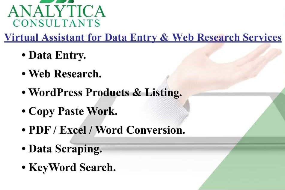 Portfolio for Virtual Assistant For Data & Web R&D