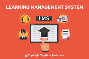 Portfolio for Learning Management System (LMS)