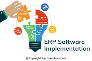 Portfolio for ERP Software Implementation