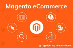 Portfolio for Magento eCommerce Website & Extensions