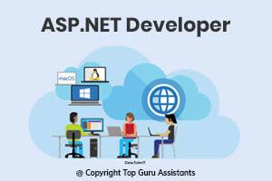 Portfolio for Hire ASP.NET Developer | Web Development