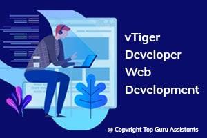 Portfolio for Hire vTiger Developer | Web Development
