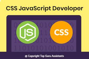 Portfolio for Hire CSS JavaScript Developer