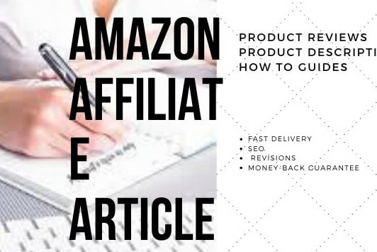 Portfolio for Amazon Affiliate Niche Writer