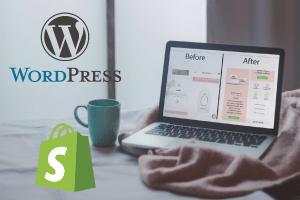 Portfolio for I will Redesign or Build a Website