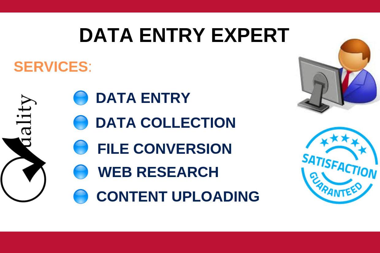 Portfolio for Data Entry, Pdf to word, JPG to WORD