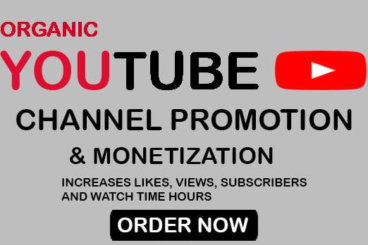 Portfolio for Youtube SEO, Promotion and Monetization