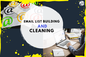 Portfolio for Email List Building and Cleaning   B2B