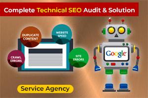 Portfolio for Complete Technical SEO Audit & Solution
