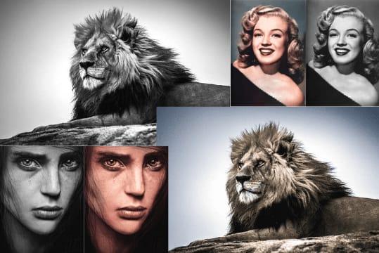 Portfolio for Colourize black and white photos