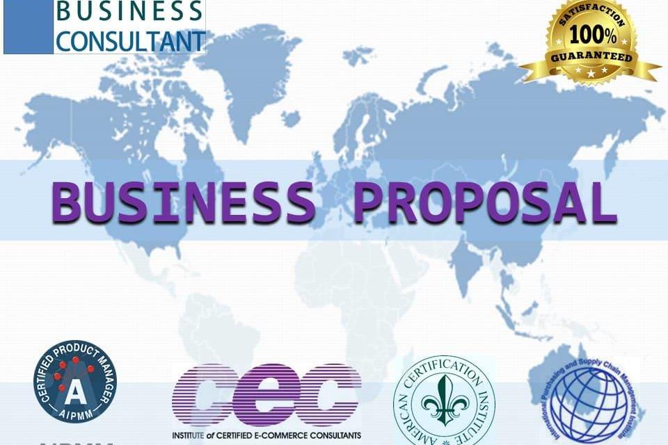 Portfolio for Business Proposal