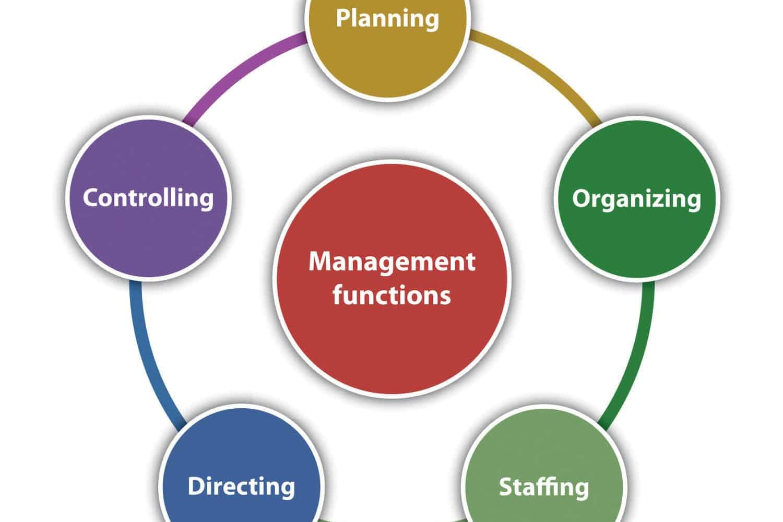Portfolio for Files Organization Management