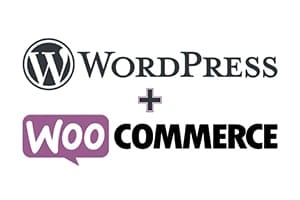 Portfolio for Wordpress + wocommerce